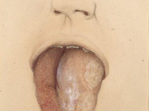 How Many Licks